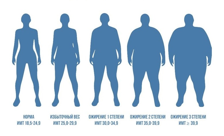 Ожирение и гипертоническая болезнь